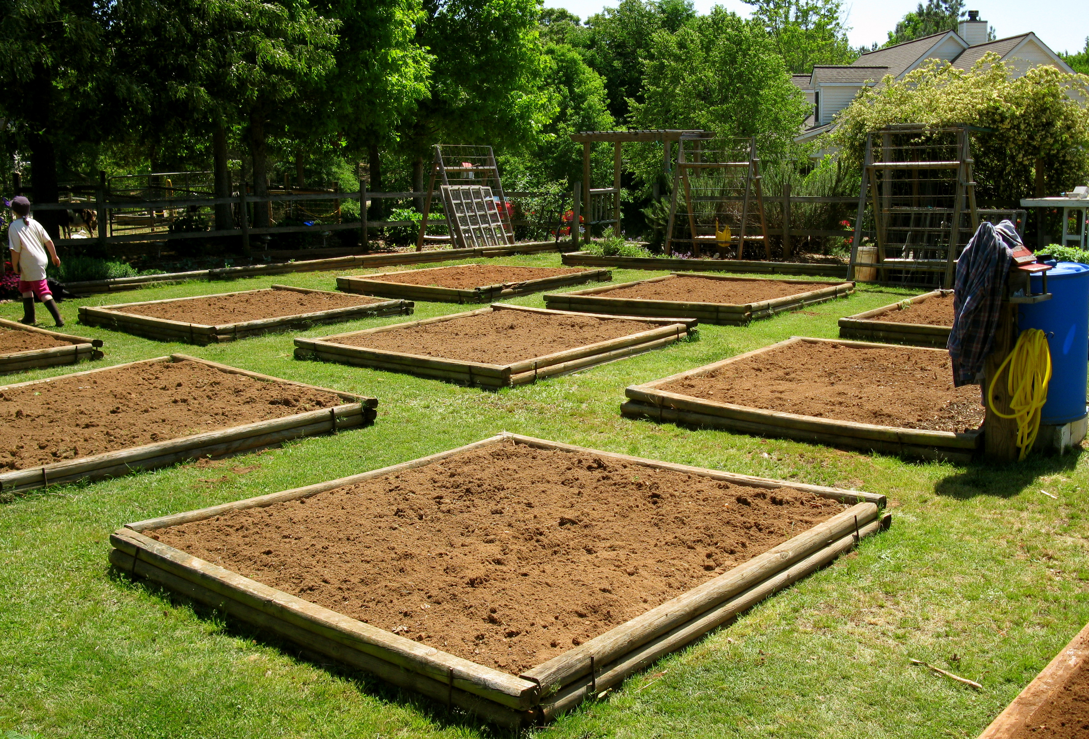 Vegetable Gardening   Lazy B Farm\'s Blog