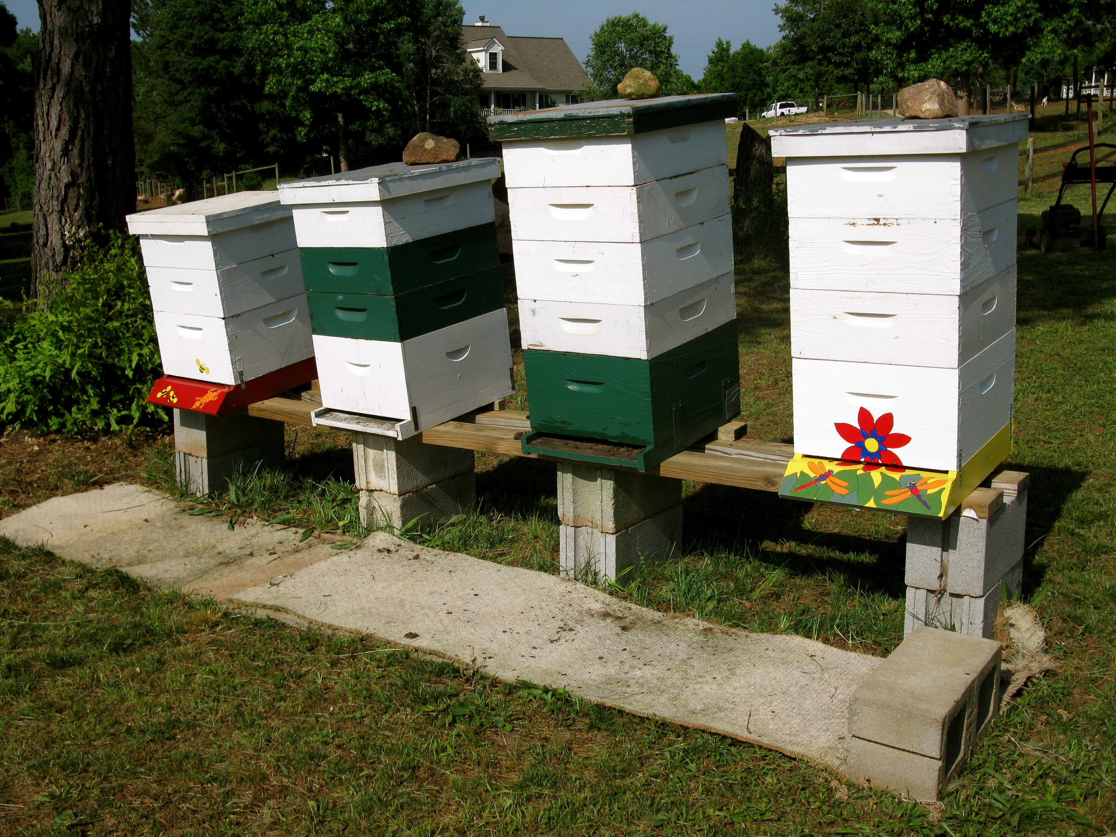 cleaning bee yards | Lazy B Farm's Blog